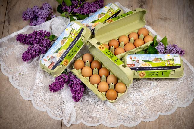 Sprzedaż jajek od kurek z chowu naturalnego wolnowybiegowego hurt deta