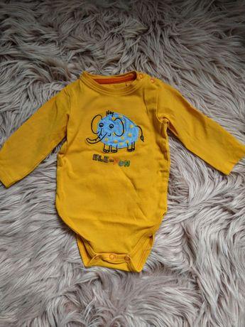 Body niemowlęce 5.10.15 elefun r.62