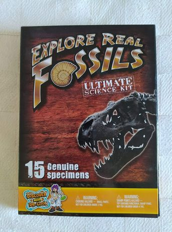Jogo explorar os fósseis