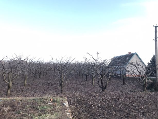 Земельный участок в Семёновке