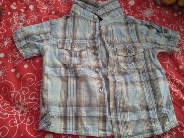 Koszula niemowlęca 68-75 Next