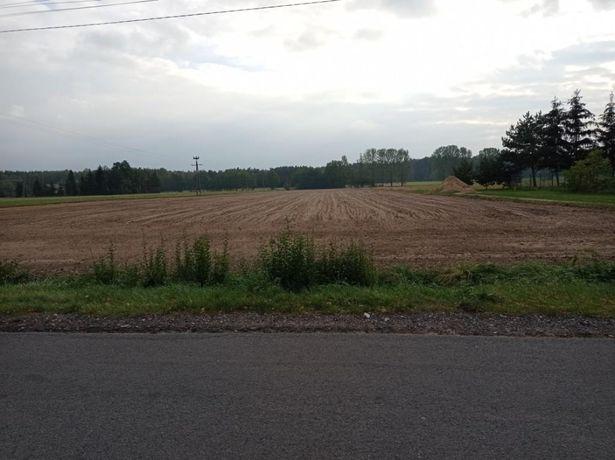 Sprzedam działkę rolno-budowlaną Poddębice