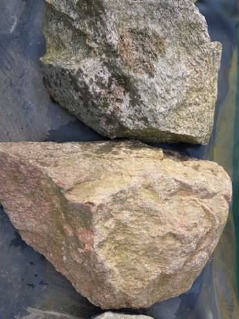 Oddam kamień polny
