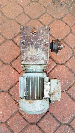 motoreduktor jak na zdjęciu