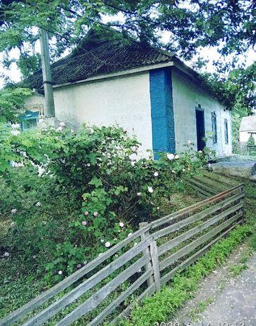 Будинок с. Лехнівка (74 км до метро Бориспільська)