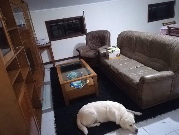Sofá de pele ( conjunto de sofa cama grande + 3 pequenos )