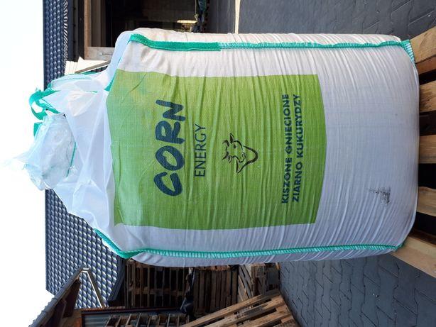 Gniecione zakiszone ziarno kukurydzy w Bigbagu