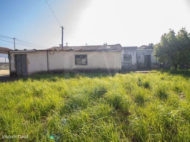 Armazém com vasto terreno em Oliveira de Azeméis