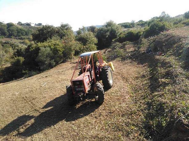 Limpeza de terrenos , corte de árvores e vedações
