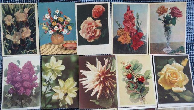 """Открытки ретро """"Цветы"""", 50-е годы"""