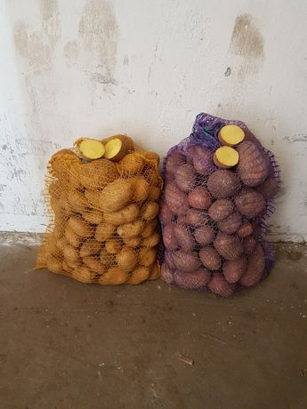 Ziemniaki Tajfun Owacja Bellaroza Denar Jelly transport