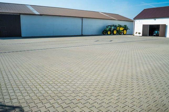 Ukladanie kostki brukowej / Uslugi brukarskie/ Duże powierzchnie 500m+