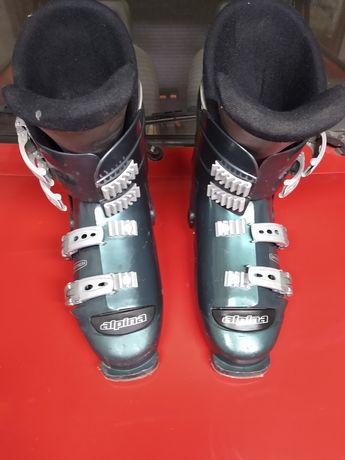Buty narciarskie alpina