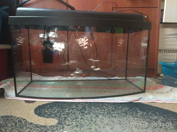Akwarium 60 litrów