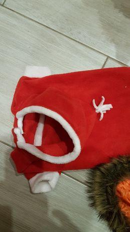 Świąteczne ubranko dla psa