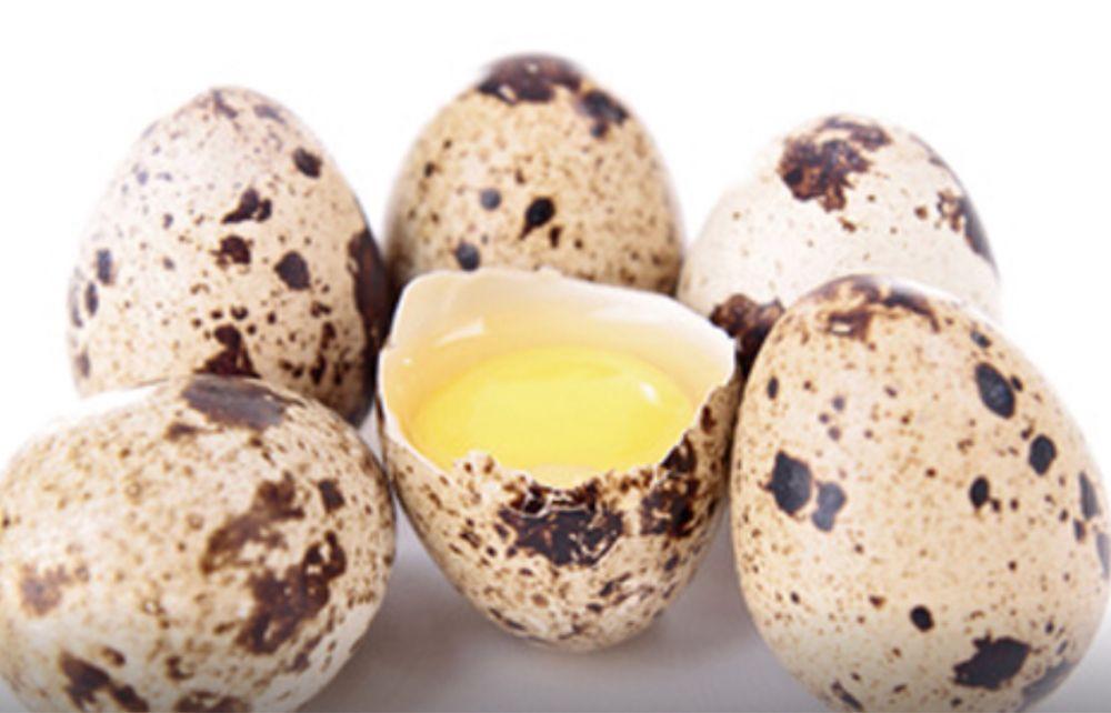 Перепелиные яйца Марганец - изображение 1