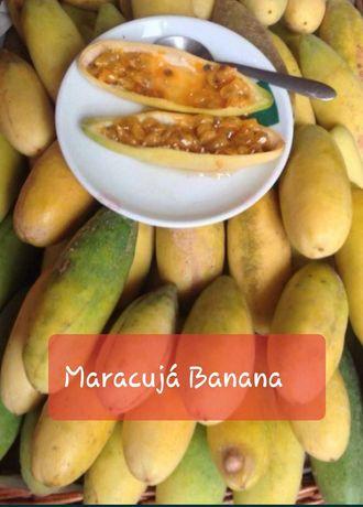 Maracujás Banana Bio