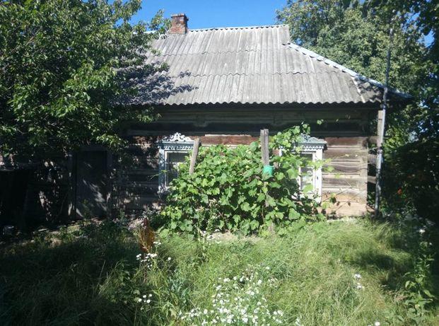 (KP) Хата в Днепровском. Рядом Днепр