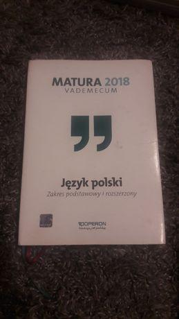 Repetytorium z j.polskiego