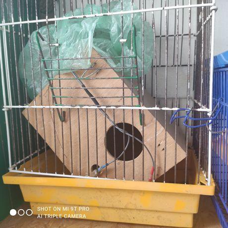 Подарую клітку для попугая
