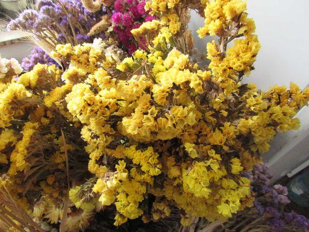 Букеты для композиции из сухоцветов