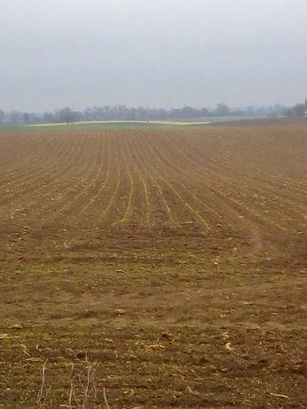 Ziemia rolna