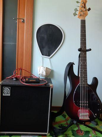Gitara basowa Sterling RAY 5 SUB + combo Ampeg Ba 112 50w bas