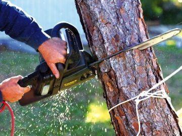Зрізка дерев різної складності