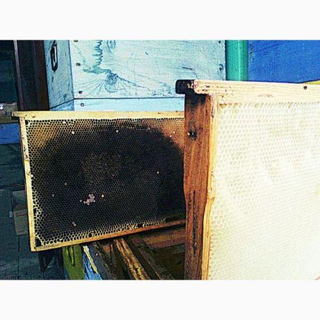 Рамки для пчел тёмные