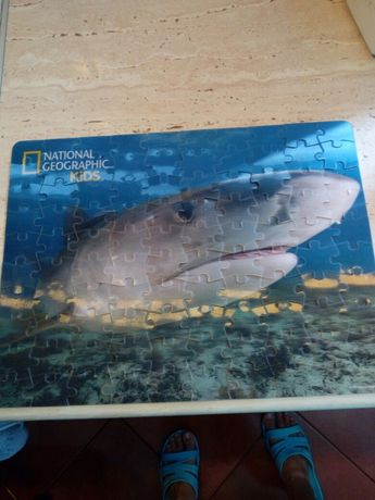 Puzzle 3 d National Geographic Kids