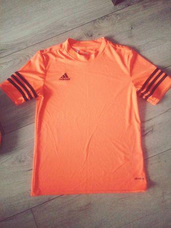 Fajna sportowa koszulka adidas