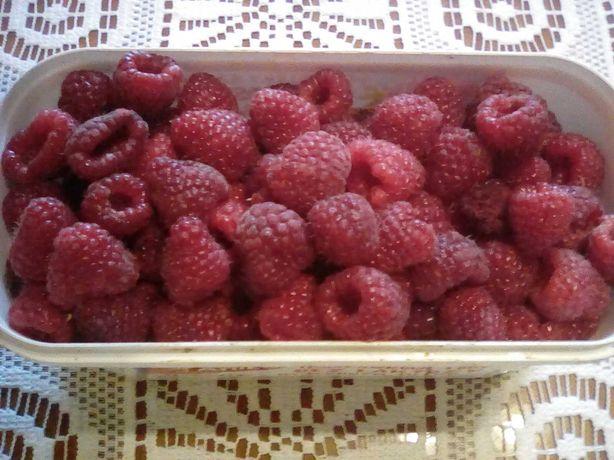 maliny  i owoce oraz borowki amerykanska