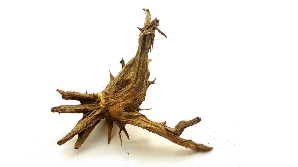 KORZEŃ DO AKWARIUM Old Pine Wood 60x50x52 .153 Lublin - image 1