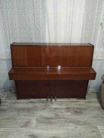 Фортепиано Petrof
