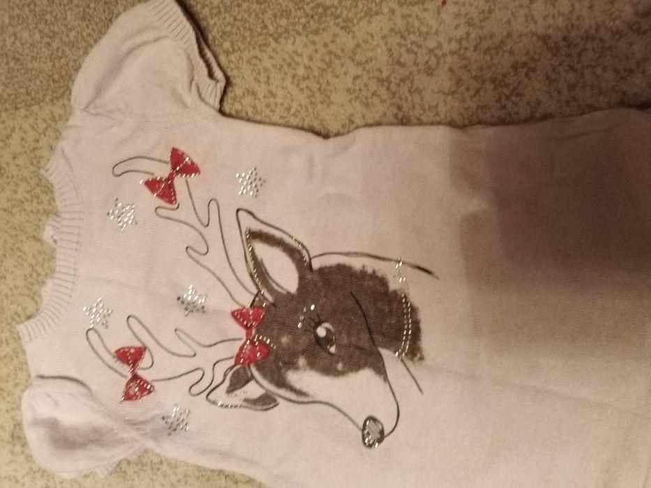Плаття для дівчинки розмір 98_104 см під низ можна дати білу кофту Козова - изображение 1