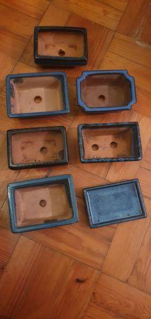 Taças Bonsai 10 a 15 cm.