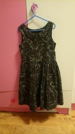 Sukienka NEXT panterka 128cm 8 lat