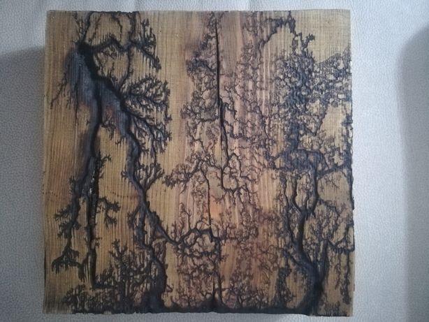 Figura Lichtenberg em madeira