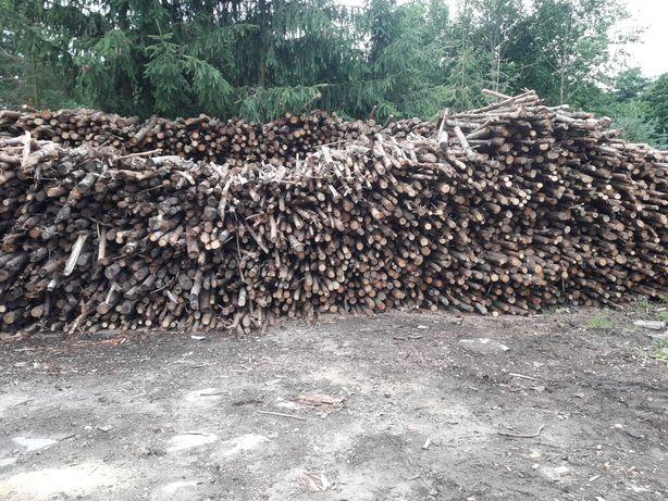 Drewno opałowe sosna sucha