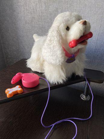 FurReal friend,интерактивная собака пес,собака с поводком,fisher price