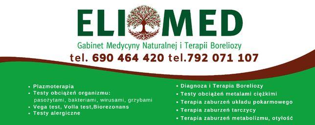 Terapia Boreliozy, Pasożytów, Grzybów, Alergii, Plazmoterapia