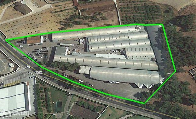 Armazém Industrial para qualquer ramo (preparado para o ramo Plástico)