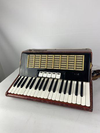 akordeon akkopg rosyjski