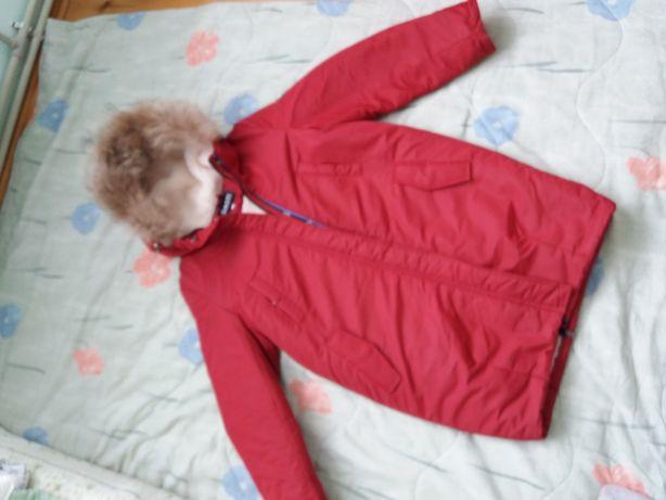 Зимова куртка Dasti