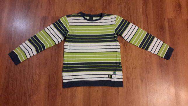 bluza chłopięca coccodrillo 146