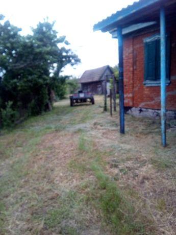 Продам дом Полтавская область село Бодаква