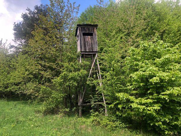 Piękne zalesione miejsce Złożeniec w otulinie Parku Orlich Gniazd