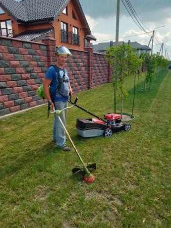 Надання послуг коріння трави .