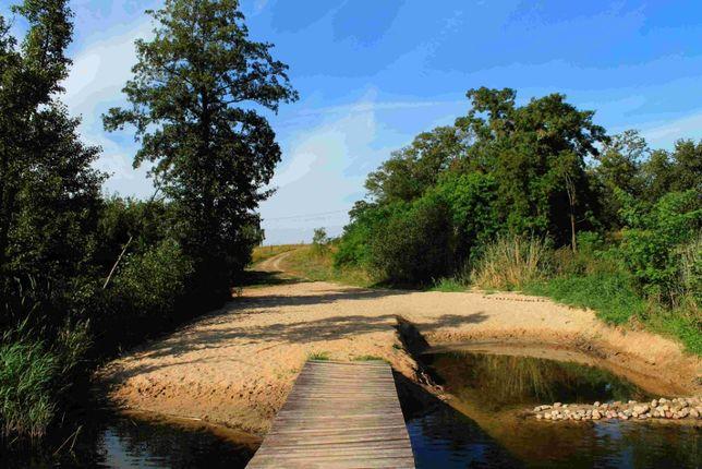 Działka rekreacyjno-leśna, blisko jeziora