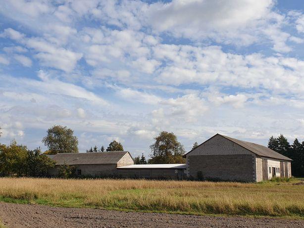 Siedlisko 2,4 ha, gospodarstwo rolne 13 ha, ziemia rolna, bezpośrednio